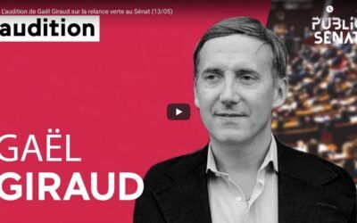 Vidéo | L'audition de Gaël Giraud sur la relance verte au Sénat